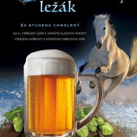 Pivní speciál – Svatomartinský Ležák